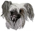 Chinese Crested Dog 5
